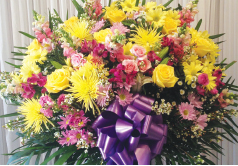 YELLOW, PURPLE AND PINK STANDARD BASKET